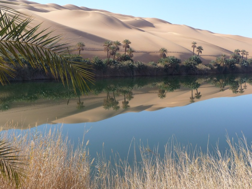 oasis-1997849_1280