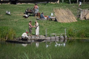 Explore Vikings